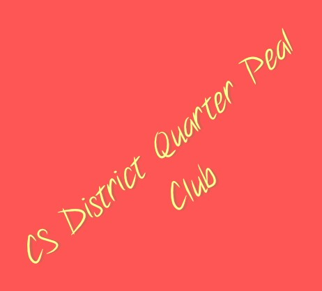 Review of the CS District Quarter Peal Club in 2016 – Tim Martin Reports