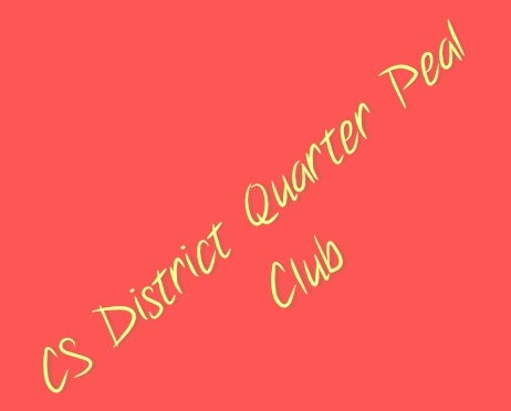 CS District Quarter Peal Club